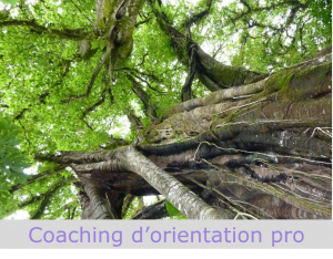Coaching d'orientation professionnelle